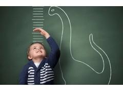 Программа для детей 2 лет